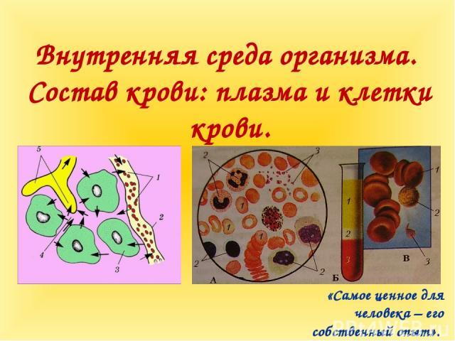 Внутренняя среда организма. Состав крови: плазма и клетки крови. «Самое ценное для человека – его собственный опыт».