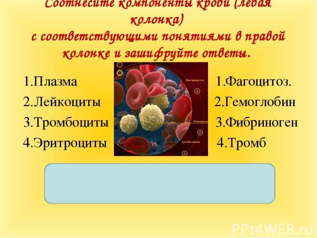 Соотнесите компоненты крови (левая колонка) с соответствующими понятиями в правой колонке и зашифруйте ответы. 1.Плазма 1.Фагоцитоз. 2.Лейкоциты 2.Гемоглобин 3.Тромбоциты…
