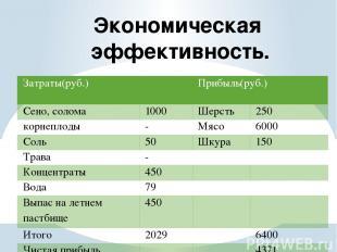 Экономическая эффективность.  Затраты(руб.) Прибыль(руб.) Сено, солома 1000 Шер