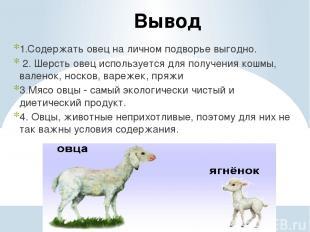 Вывод 1.Содержать овец на личном подворье выгодно. 2. Шерсть овец используется д