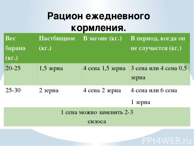 Рацион ежедневного кормления. Вес барана (кг.) Пастбищное (кг.) В загоне (кг.) В период, когда он не случается (кг.) 20-25 1,5 зерна 4 сена 1,5 зерна 3 сена или 4 сена 0,5 зерна 25-30 2 зерна 4 сена 2 зерна 4 сена или 6 сена 1 зерна 1 сена можно зам…