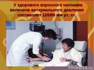 У здорового взрослого человека величина артериального давления составляет 120/80