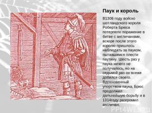 Паук и король В1306 году войско шотландского короля Роберта Брюса потерпело пора