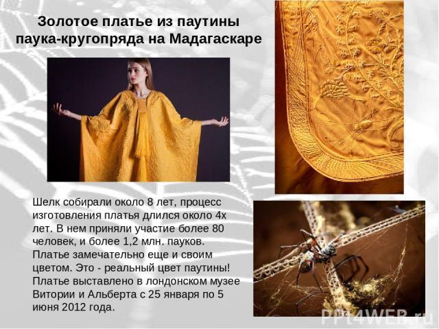 Золотое платье из паутины паука-кругопряда на Мадагаскаре Шелк собирали около 8 лет, процесс изготовления платья длился около 4х лет. В нем приняли участие более 80 человек, и более 1,2 млн. пауков. Платье замечательно еще и своим цветом. Это - реал…