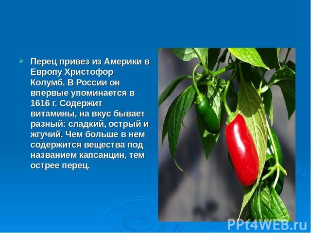 Перец привез из Америки в Европу Христофор Колумб. В России он впервые упоминается в 1616 г. Содержит витамины, на вкус бывает разный: сладкий, острый и жгучий. Чем больше в нем содержится вещества под названием капсанцин, тем острее перец.