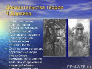 Доказательства теории Ч.Дарвина. 3. Антропологам удалось найти несколько останко