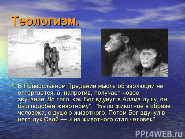 """Теологизм. В Православном Предании мысль об эволюции не отторгается, а, напротив, получает новое звучание""""До того, как Бог вдунул в Адама душу, он был подобен животному"""", """"Было животное в образе человека, с душою животного. Потом Бог вдунул в него д…"""