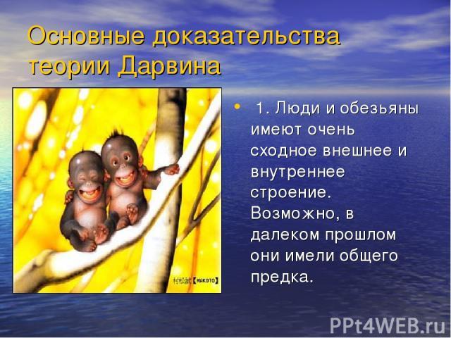 Основные доказательства теории Дарвина 1. Люди и обезьяны имеют очень сходное внешнее и внутреннее строение. Возможно, в далеком прошлом они имели общего предка.