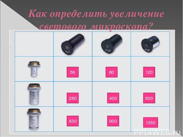 56 80 120 280 400 600 630 900 1350 Как определить увеличение светового микроскопа?