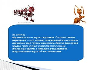 На заметку Мирмекология — наука о муравьях. Соответственно, мирмеколог — это уче