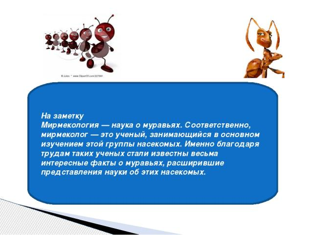 На заметку Мирмекология — наука о муравьях. Соответственно, мирмеколог — это ученый, занимающийся в основном изучением этой группы насекомых. Именно благодаря трудам таких ученых стали известны весьма интересные факты о муравьях, расширившие предста…