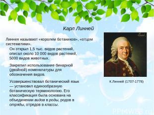 Линнея называют «королем ботаников», «отцом систематики». Он открыл 1,5 тыс. вид