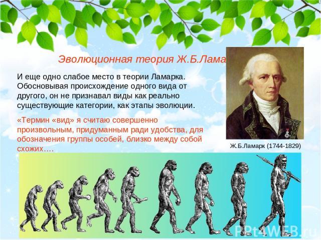 Эволюционная теория Ж.Б.Ламарка И еще одно слабое место в теории Ламарка. Обосновывая происхождение одного вида от другого, он не признавал виды как реально существующие категории, как этапы эволюции. «Термин «вид» я считаю совершенно произвольным, …