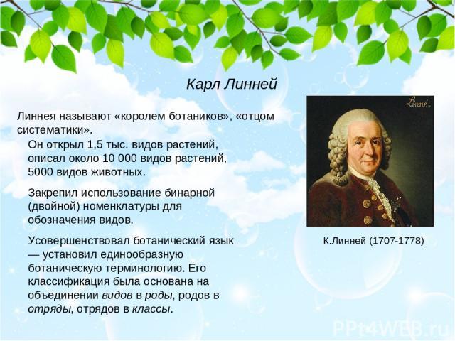 Линнея называют «королем ботаников», «отцом систематики». Он открыл 1,5 тыс. видов растений, описал около 10 000 видов растений, 5000 видов животных. Закрепил использование бинарной (двойной) номенклатуры для обозначения видов. Усовершенствовал бота…