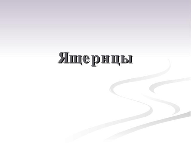 Ящерицы Пользователь - null