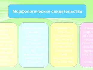 Гомологичные органы (органы, имеющие сходный план строения, общее происхождение,