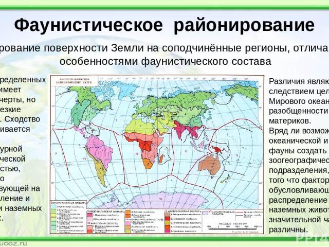 Фаунистическое районирование районирование поверхности Земли на соподчинённые регионы, отличающиеся особенностями фаунистического состава Фауна определенных районов имеет сходные черты, но также и резкие различия. Сходство обусловливается общей темп…