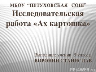 """Выполнил: ученик 5 класса ВОРОНИН СТАНИСЛАВ МБОУ """"ПЕТУХОВСКАЯ СОШ"""" Исследователь"""