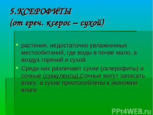 5.КСЕРОФИТЫ (от греч. ксерос – сухой) растения, недостаточно увлажненных местооб