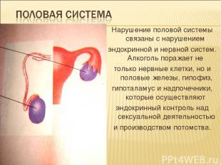 Нарушение половой системы связаны с нарушением эндокринной и нервной систем. Алк