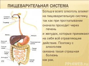 Больше всего алкоголь влияет на пищеварительную систему, так как при проглатыван