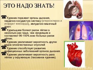 ЭТО НАДО ЗНАТЬ! Курение поражает органы дыхания, сердечно-сосудистую систему (ат