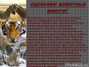 охраняем животных вместе! Во всем мире и в нашей стране охота на редких животных