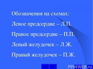 Обозначения на схемах: Левое предсердие – Л.П. Правое предсердие – П.П. Левый же