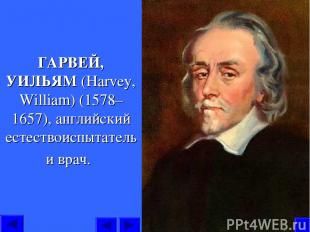 ГАРВЕЙ, УИЛЬЯМ (Harvey, William) (1578–1657), английский естествоиспытатель и вр