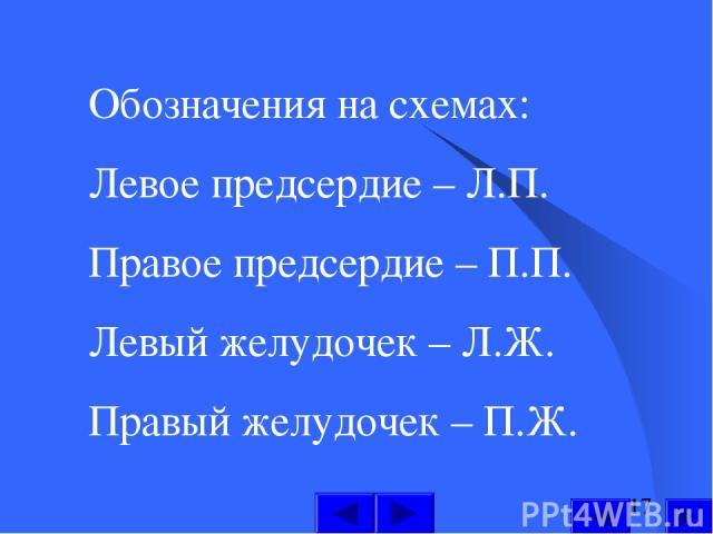 Обозначения на схемах: Левое предсердие – Л.П. Правое предсердие – П.П. Левый желудочек – Л.Ж. Правый желудочек – П.Ж.