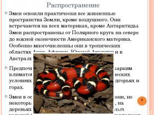 Распространение Змеи освоили практически все жизненные пространства Земли, кроме