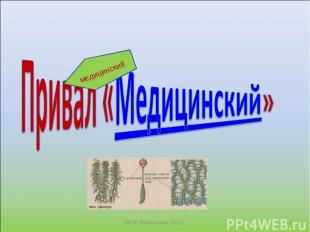 """* МОУ """"Велвинская ООШ"""" медицинский МОУ """"Велвинская ООШ"""""""
