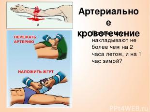 Артериальное кровотечение Почему жгут накладывают не более чем на 2 часа летом,