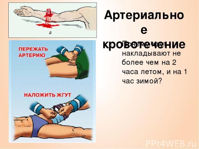 Артериальное кровотечение Почему жгут накладывают не более чем на 2 часа летом, и на 1 час зимой?