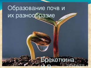 Образование почв и их разнообразие Брекоткина И.В., учитель биологии МАОУ «Лицей
