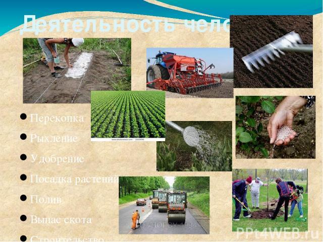 Деятельность человека Перекопка Рыхление Удобрение Посадка растений Полив Выпас скота Строительство