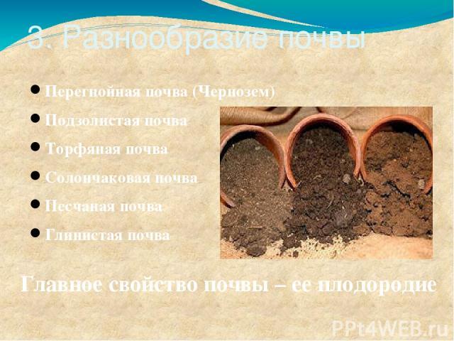 3. Разнообразие почвы Перегнойная почва (Чернозем) Подзолистая почва Торфяная почва Солончаковая почва Песчаная почва Глинистая почва Главное свойство почвы – ее плодородие