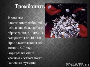 Тромбоциты Кровяные пластинки(тромбоциты) – небольшие безъядерные образования, в