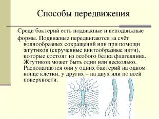 Способы передвижения Среди бактерий есть подвижные и неподвижные формы. Подвижны