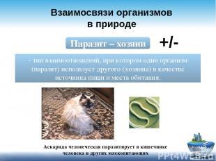 Взаимосвязи организмов в природе Паразит – хозяин - тип взаимоотношений, при кот