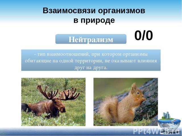 Взаимосвязи организмов в природе Нейтрализм - тип взаимоотношений, при котором организмы обитающие на одной территории, не оказывают влияния друг на друга. 0/0