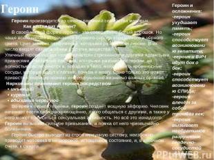 Героин Героин производится из смолы растений семейства маковых. Как выглядит гер