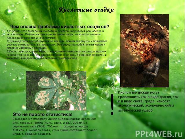 Кислотные осадки Чем опасна проблема кислотных осадков? 1)В результате выпадения кислотных осадков нарушается равновесие в экосистемах. Районы кислых почв не знают засух, но их естественное плодородие снижено и неустойчиво; 2)Диоксид серы адсорбируе…