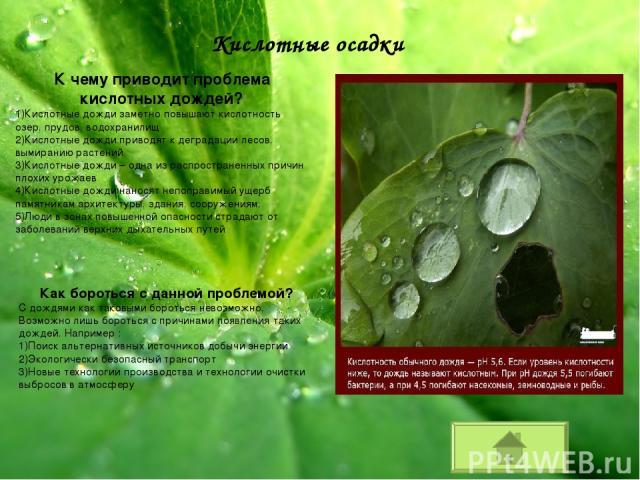Кислотные осадки К чему приводит проблема кислотных дождей? Кислотные дожди заметно повышают кислотность озер, прудов, водохранилищ Кислотные дожди приводят к деградации лесов, вымиранию растений Кислотные дожди – одна из распространенных причин пло…