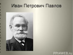 Иван Петрович Павлов Иван Петрович Павлов (14.09.1849 – 27.02.1936) – самый изве