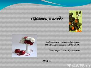 «Цветок и плод» подготовила учитель биологии МБОУ г. Астрахани «СОШ № 51» Палама