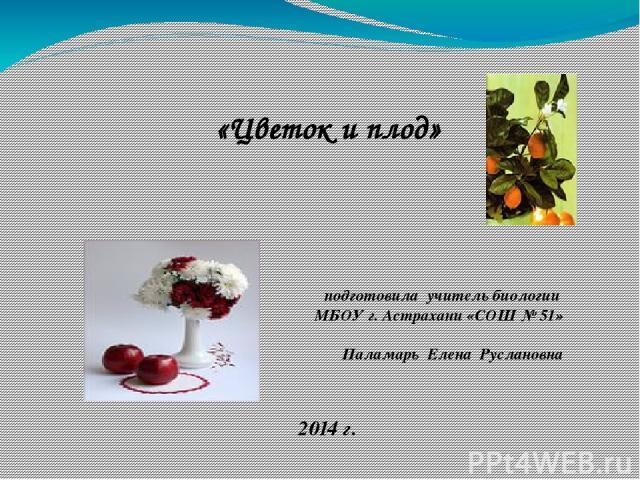 «Цветок и плод» подготовила учитель биологии МБОУ г. Астрахани «СОШ № 51» Паламарь Елена Руслановна 2014 г.