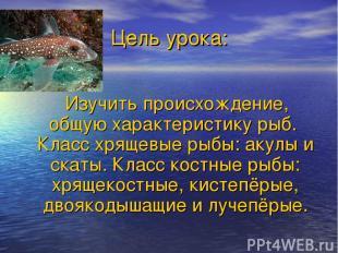 Цель урока: Изучить происхождение, общую характеристику рыб. Класс хрящевые рыбы