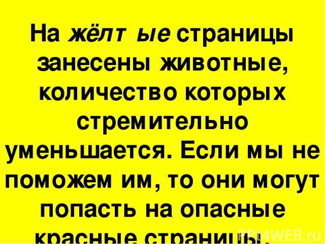 На жёлтые страницы занесены животные, количество которых стремительно уменьшается. Если мы не поможем им, то они могут попасть на опасные красные страницы.