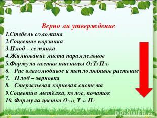 Верно ли утверждение Стебель соломина Соцветие корзинка Плод – семянка Жилковани